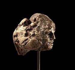 Gorgone Bronze