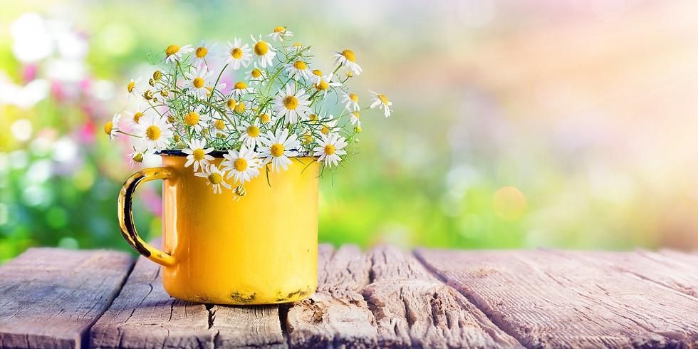 Kraftvoll in den Frühling