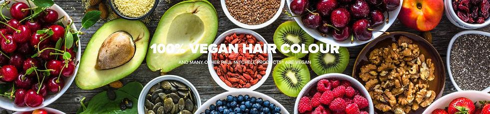 Paul_Mitchell_Hair_Color_XG.jpg