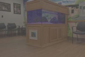 Aquarium%20Fish%20tank%20Professional%20