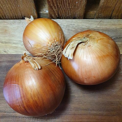 Large White Onions - 1kg