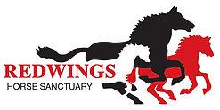 redwings_logo.jpg