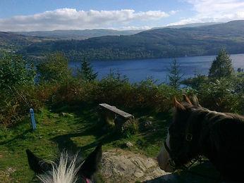 Christine Fletcher - South Loch Ness.jpg