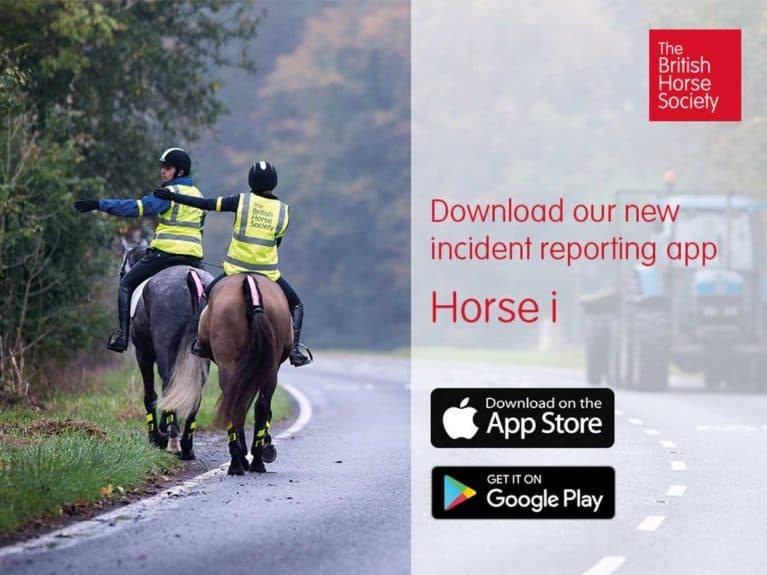 Horse-i-app-767x575.jpg