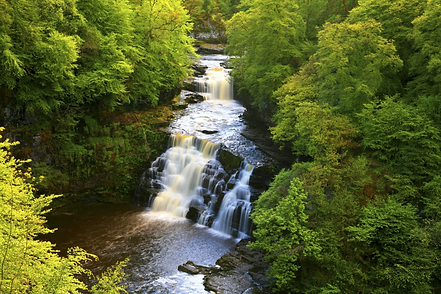 Falls of Clyde 2.png