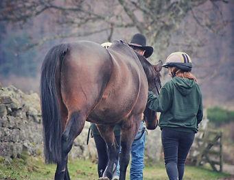 Horseback UK image 1.jpg