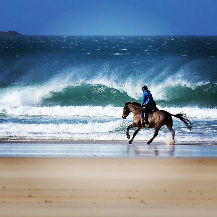 Paula Tippett - Gwithian Beach Cornwall.