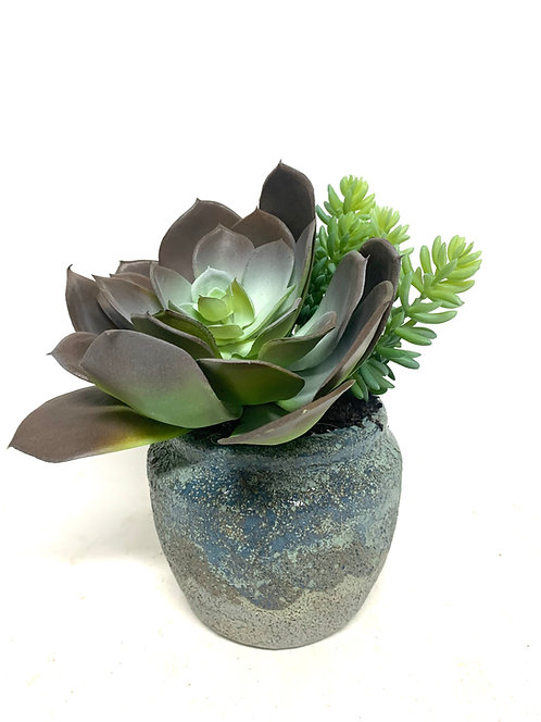 "3427 SUCCULENTS IN SM BLUE EARTHY POT 7""X8"""