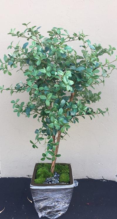 3144-6 6' Gardenia Leaf in Zinc