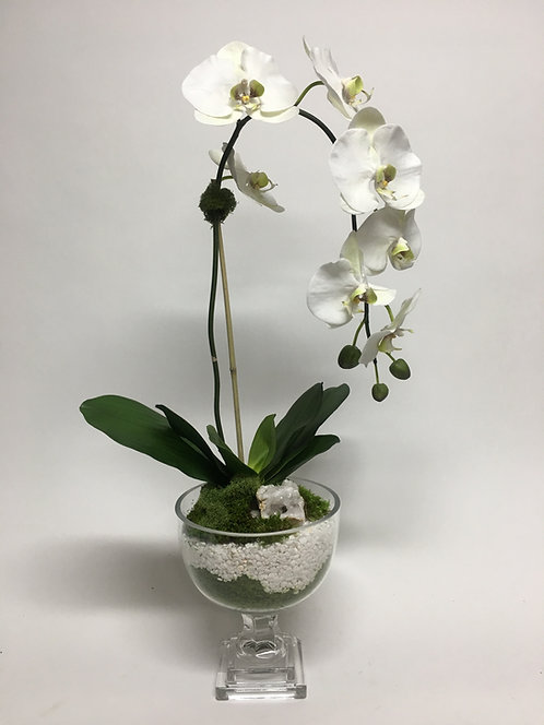 3001 Orchid & White Rock in Glass Urn