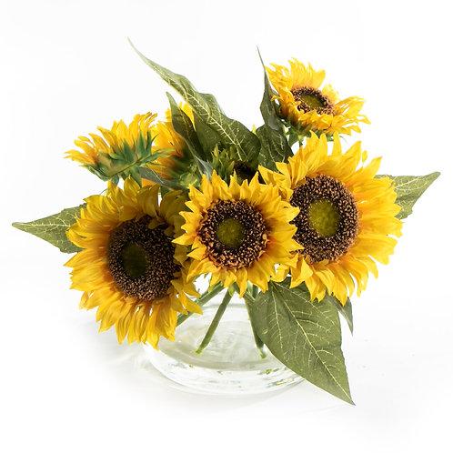 2674 Sunflower in Glass Vase 12x14