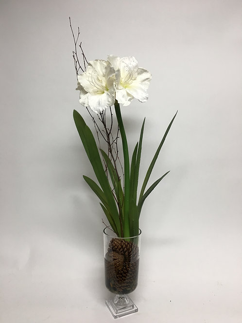 2809 White Amaryllis in Glass Urn