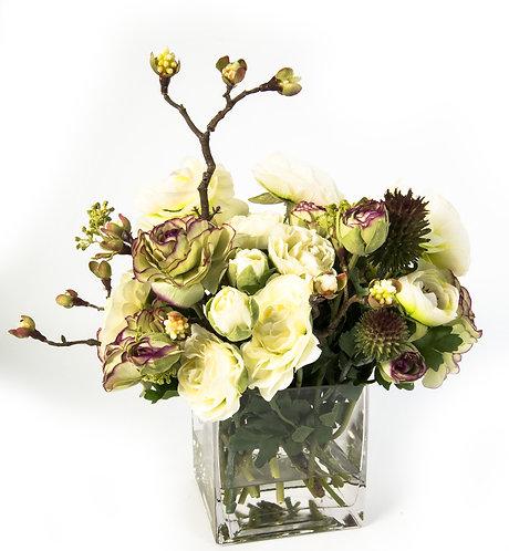 2644 White/Plum Green Ranunculus in Glass 14x12