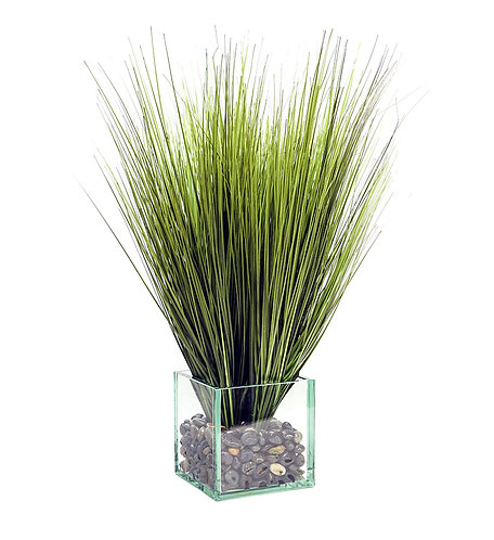 3233 ONION GRASS IN GLASS CUBE