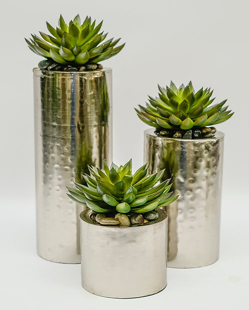 2131 SET OF 3 SUCCULENTS IN SILVER
