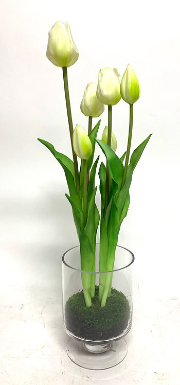 """3359 TULIP GLASS FOOTED CUP 5""""X20"""""""