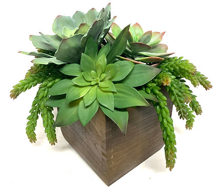 """3404 SUCCULENTS IN WOOD BOX 14""""X14"""""""