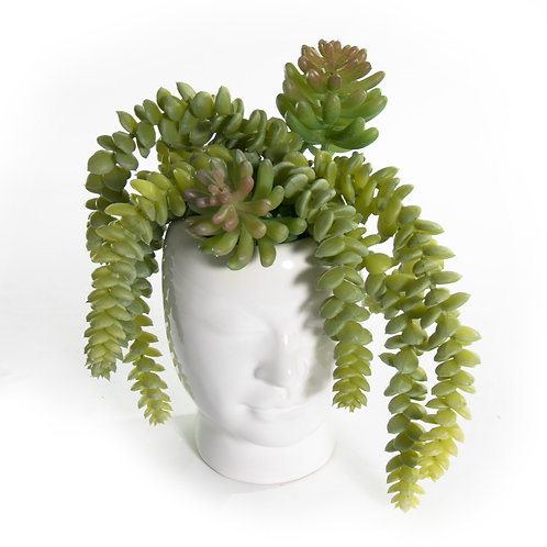 2751 Succulent Head Vase Sm 9x8