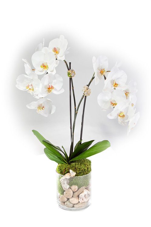 "2519 Double Orchid w/Crystal in 6"" glass 27"""