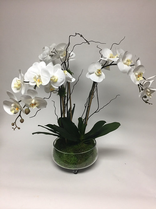 "2991 Orchids in Glass Footed Bowl  27""x27"""