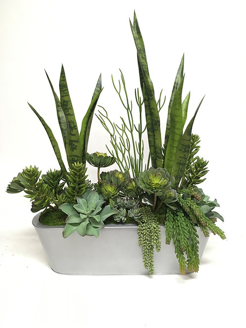 "3420 SUCCULENT CENTERPIECE IN OVAL SILVER 27""X34"""
