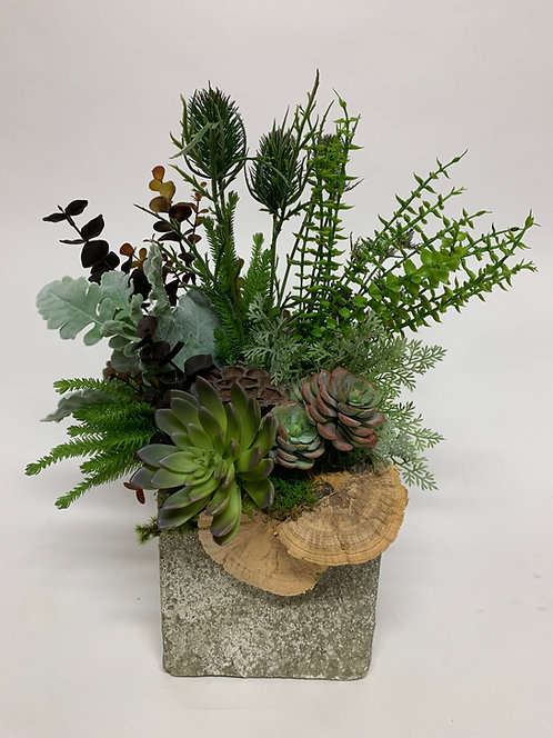 3201 WILD SUCCULENT FOREST CUBE 18X15