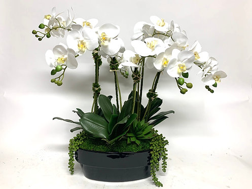 3451 ORCHID CENTERPIECE IN BLACK OVAL