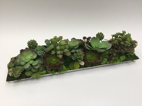 2780 Succulent Silver Tray 26x6