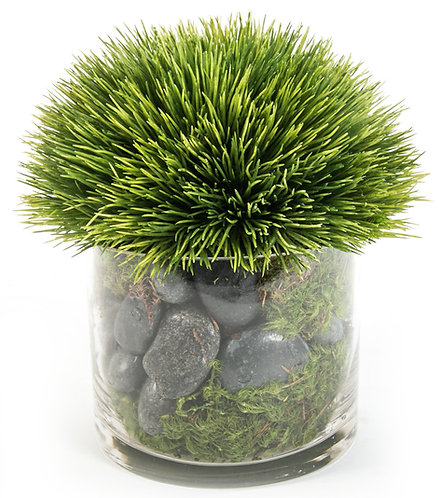 "2428 Grass in 5"" Glass 8x6"