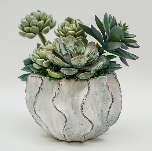 3434 SUCCULENTS IN BLUISH TUPIL BOWL SM