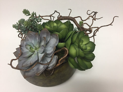 "3041 Succulents Curly Willow in Sosa Bowl 10""x14"""