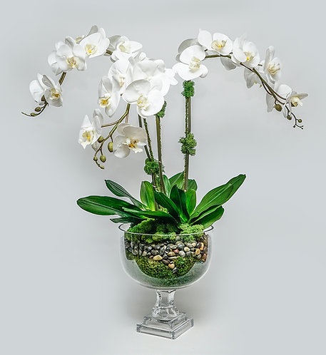 """3004 Triple Orchid in Glass Urn 30""""x21"""""""