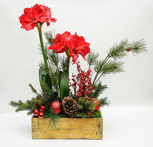 2836 GOLD WOOD BOX AMARYLLIS PINE