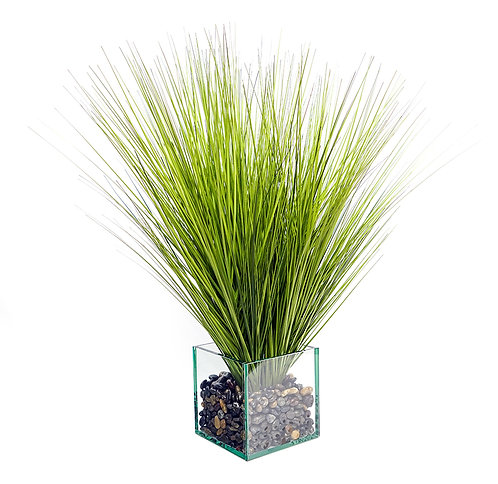 3234 ONION GRASS IN GLASS CUBE