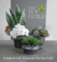 Ivy Guild Silk Flowers and Succulents.jpg