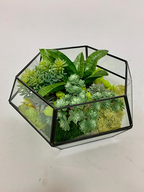 3208 GLASS HEX TERRARIUM 9X8