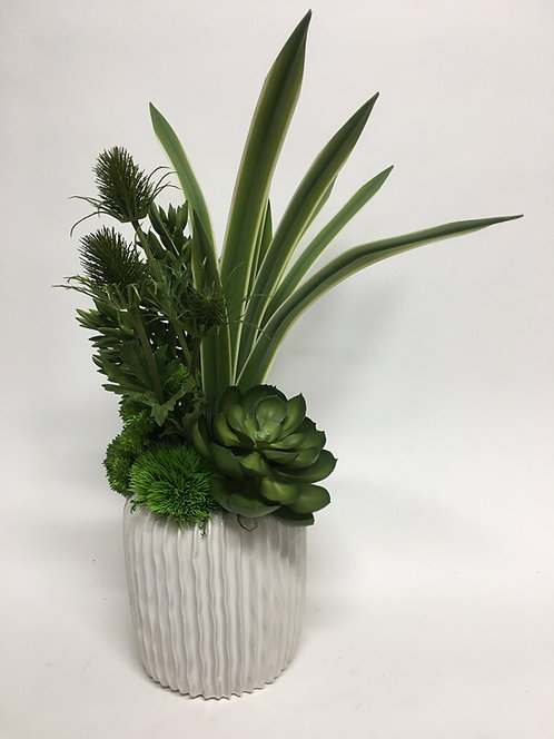"""2727 Grass, Thistle in Rippled Pot 24""""x11"""""""