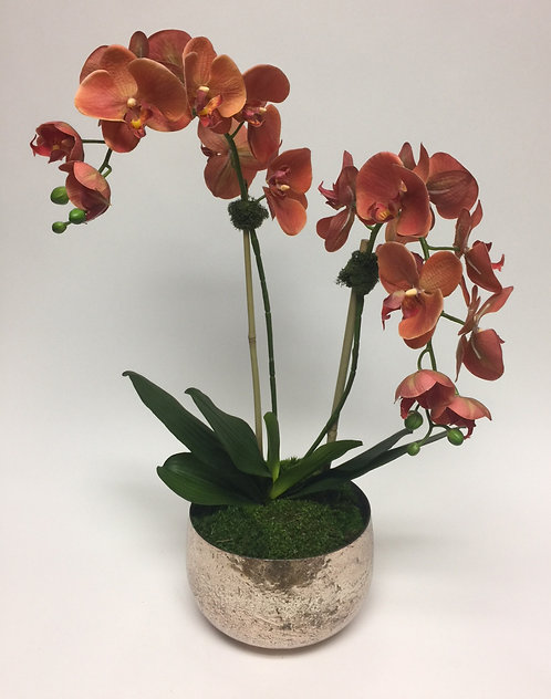 2993-CO Double Coral Orchid in Mercury Bowl 26x16