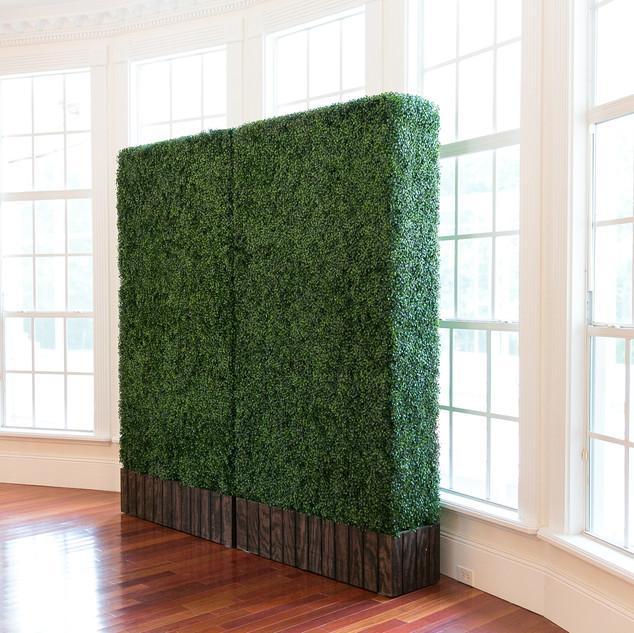 Hedge Walls // Coming Soon