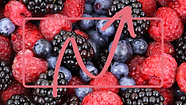 LOGO Berries and Peach.png