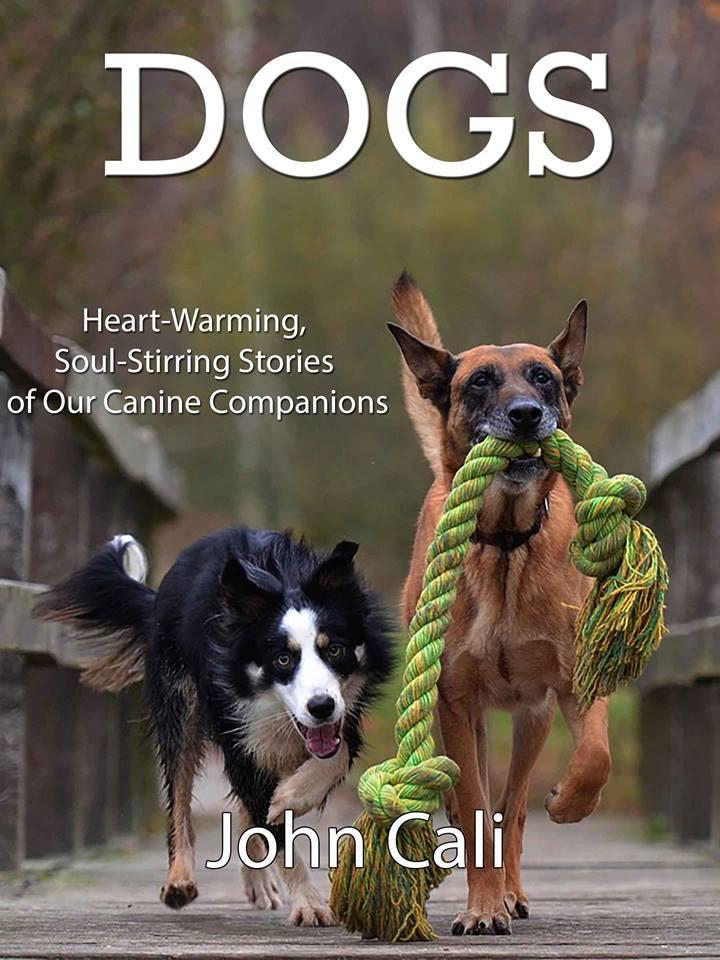 Dogs: Heart-Warming, Soul-Stirrin...