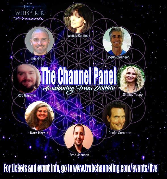 Alternate Poster 2015 Channel Panel
