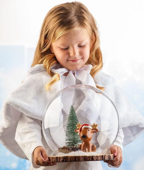 Reindeer Snowglobe Kit