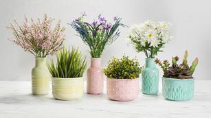 Vases & Jugs