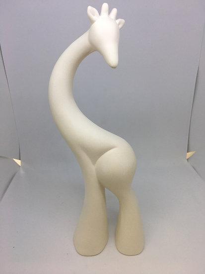Tall Elegant Giraffe