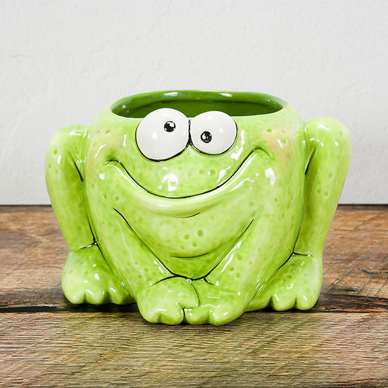Quirky Frog Planter / Container