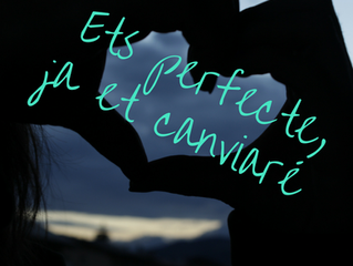 Ets perfecte, ja et canviaré