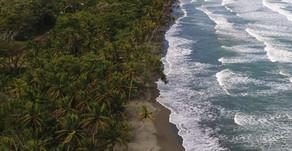 Empleados de la TCM se unieron para limpiar playa Moín
