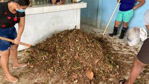 Capacitarán a 200 mujeres emprendedoras del Caribe en agroecología y agricultura orgánica
