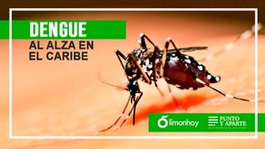 Dengue al alza en el Caribe, no lo confunda con una gripe